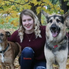 Veterinary technician kneeling next to two dogs with her arm around the dogs