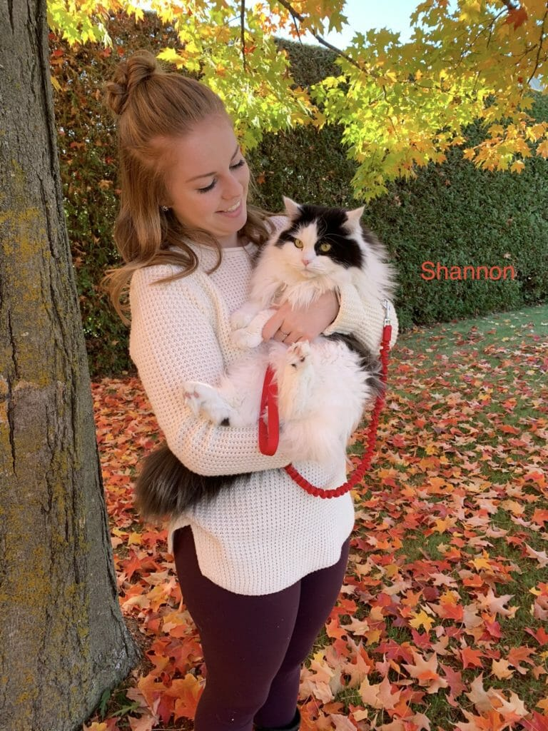 Registered vet technician holding a white and black cat in fall